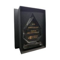 trophée diamant en verre optique gravé et remplissage couleur or