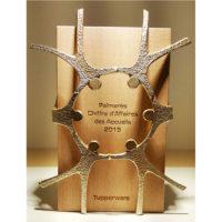 trophée bois et métal personnage gravé